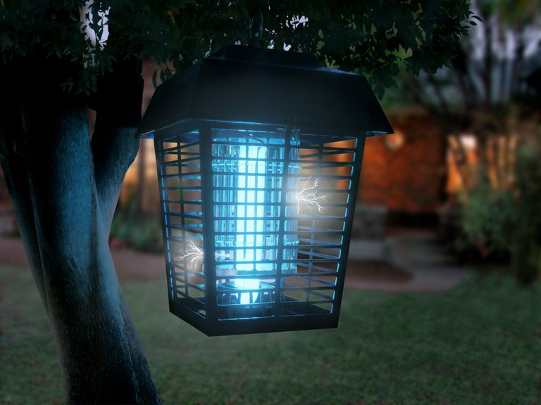 Bug Zappers Kill Mosquitoes