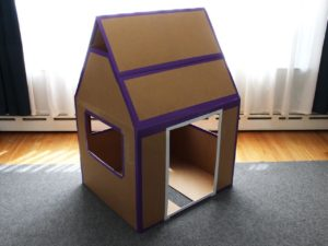 Cardboard Boxes Home Use