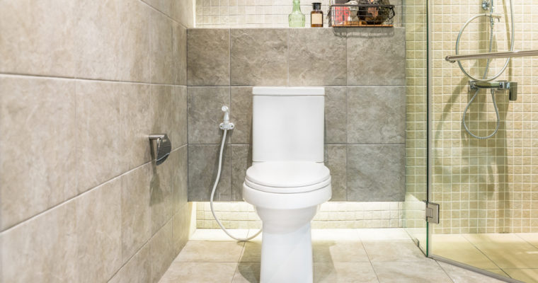Best Toilet Reviews 2017