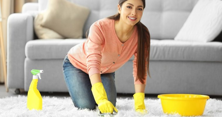 The Ultimate Guide to Carpet Cleaning for Beginners