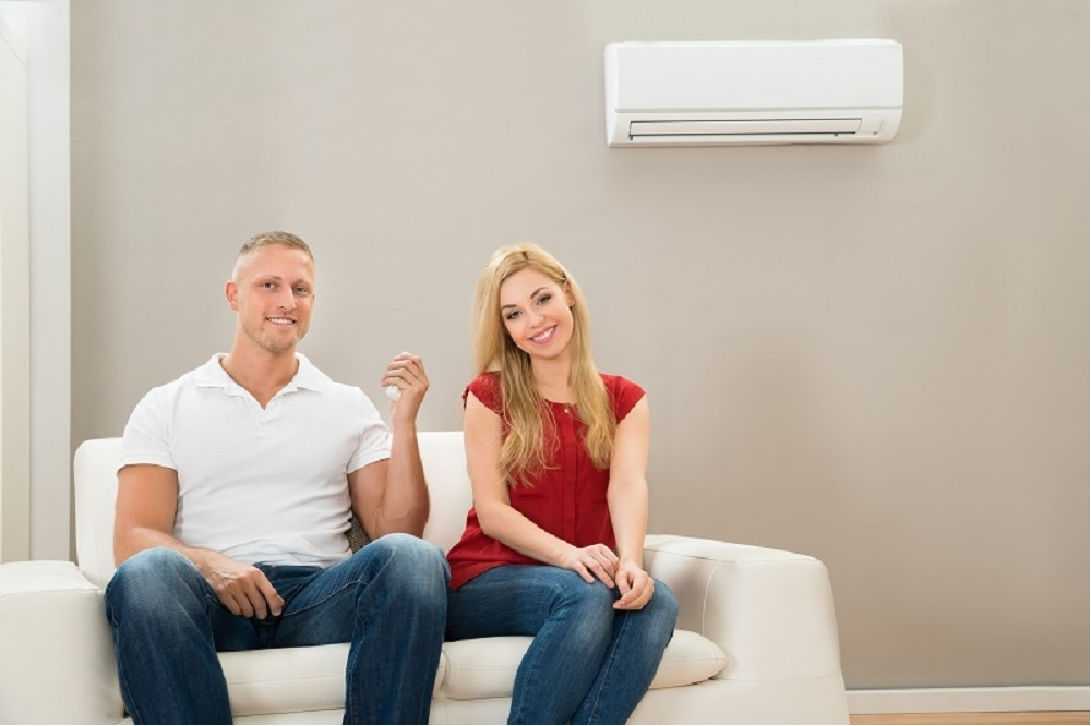 Domestic AC Service