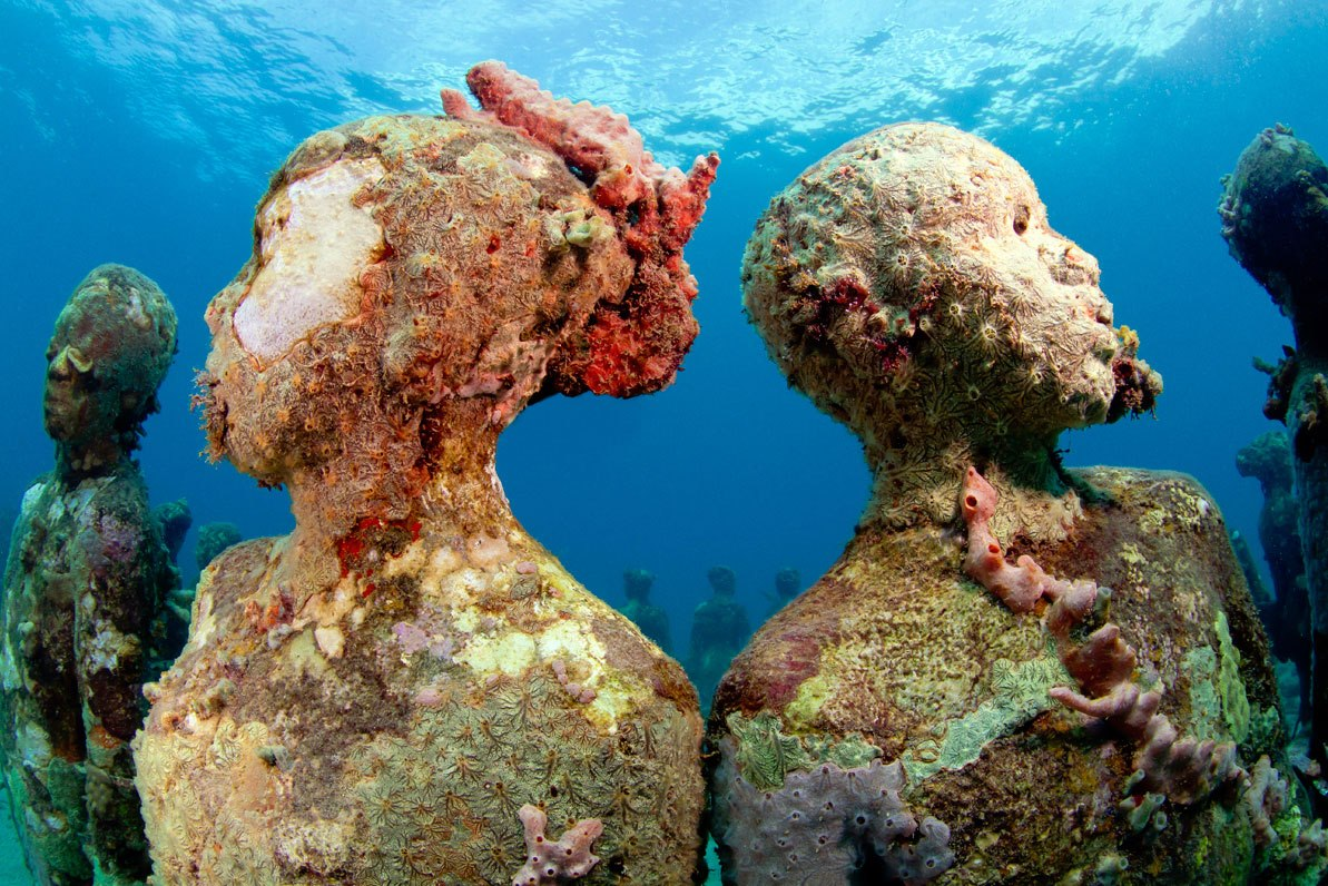 Experience Underwater Life with These Top Destinations