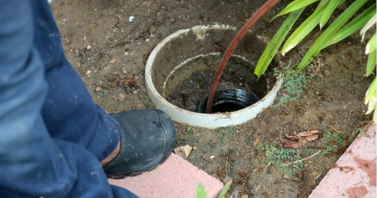Trace the Symptoms of Clogged Drain to Call Blocked Drains Specialists