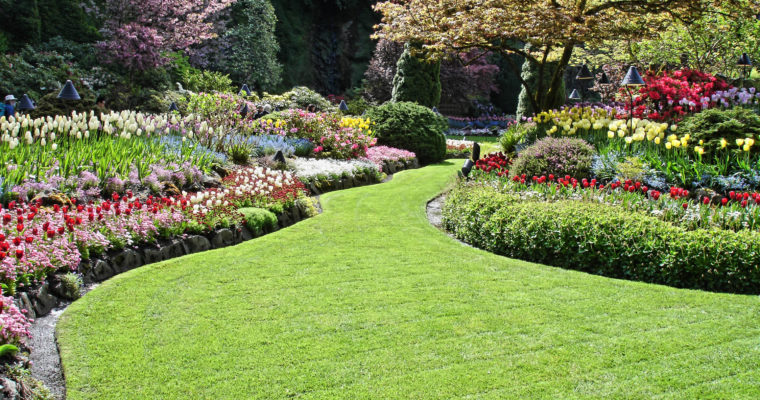 Seek Effective Landscaping Design, Installation, and Lawn Maintenance Services for Your Home