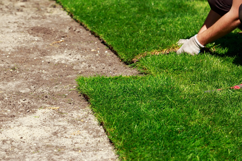 Lawn Suppliers