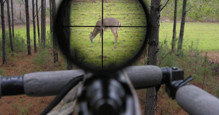 5 Best Rifle Scopes for Hunters 2018