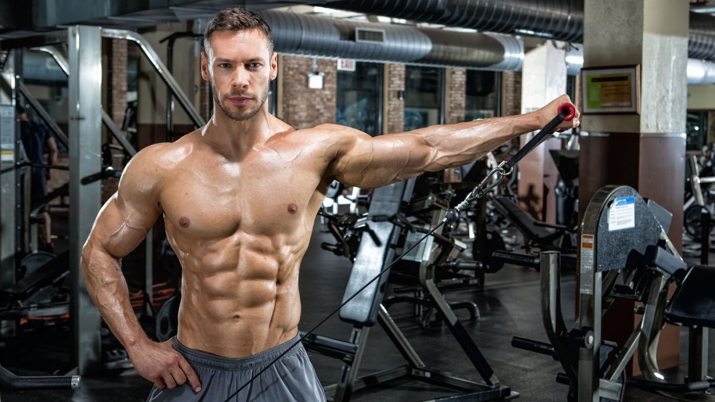 Testosterone Boosters Muscle Gain