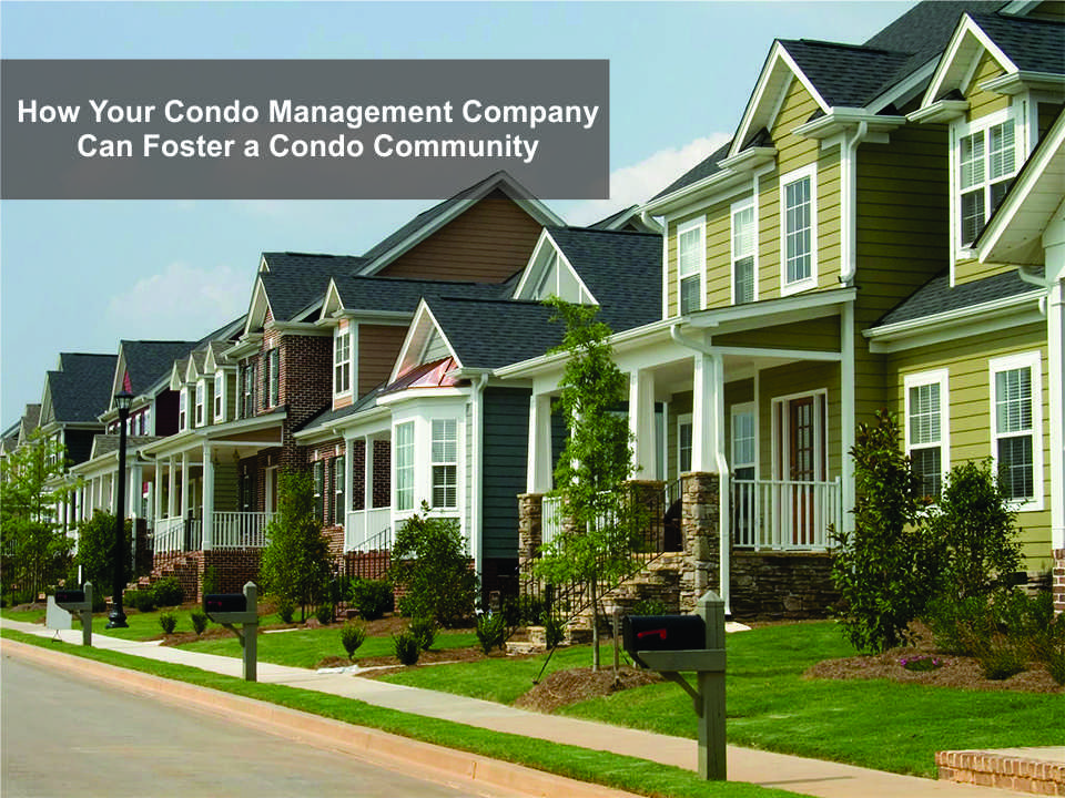 How Your Condo Management Company Can Foster a Condo Community