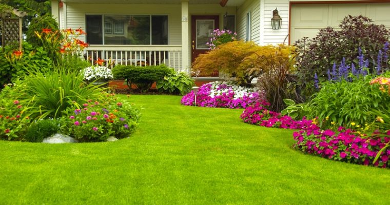 7 Landscaping Ideas Made Easy for You