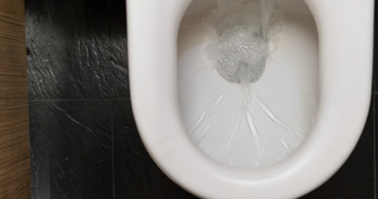 Blocked Drains Causes and How You Can Clean Them