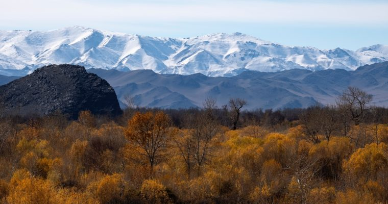 How To Plan An Off-Peak Trip To Mongolia