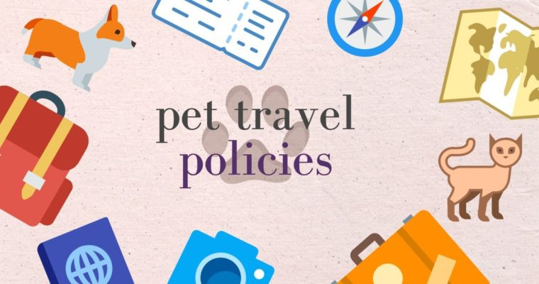 Pet Policies To Note When Traveling By Planes