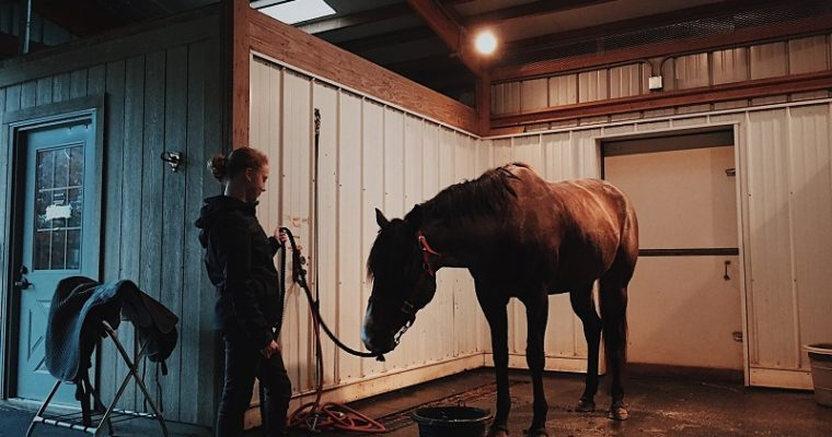 Keep Your Horses Happily Stand on A Comfortable Mat!