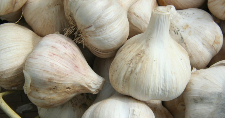 Does Garlic Work for Cholesterol Reduction Actually Work?