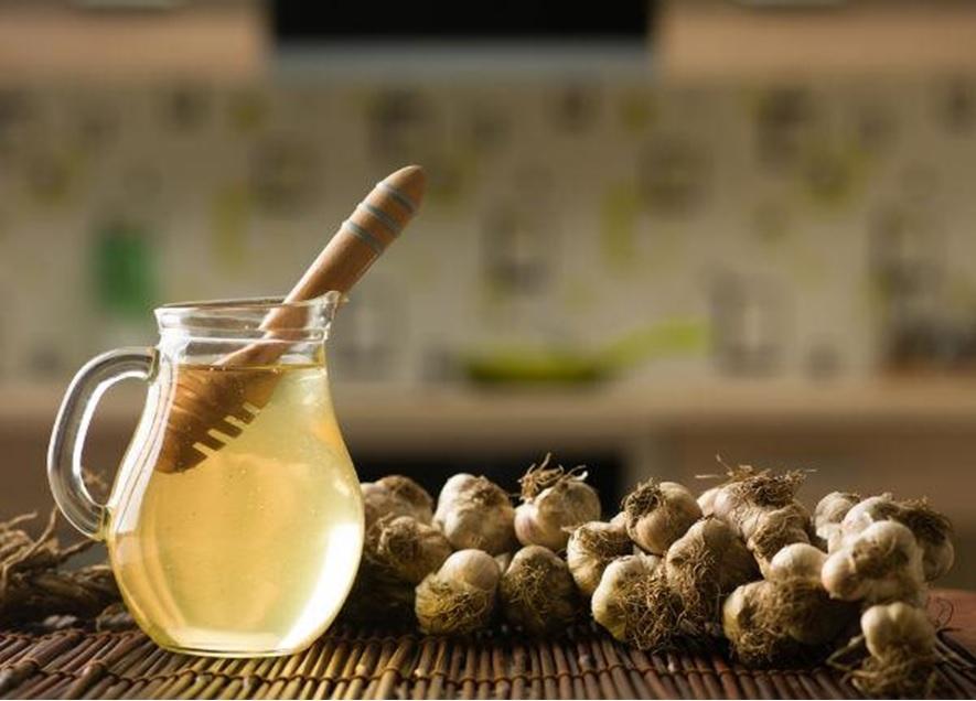 German Garlic elixir