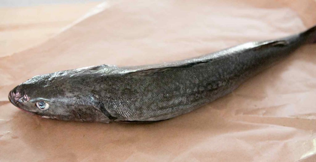 Alaska Black Cod