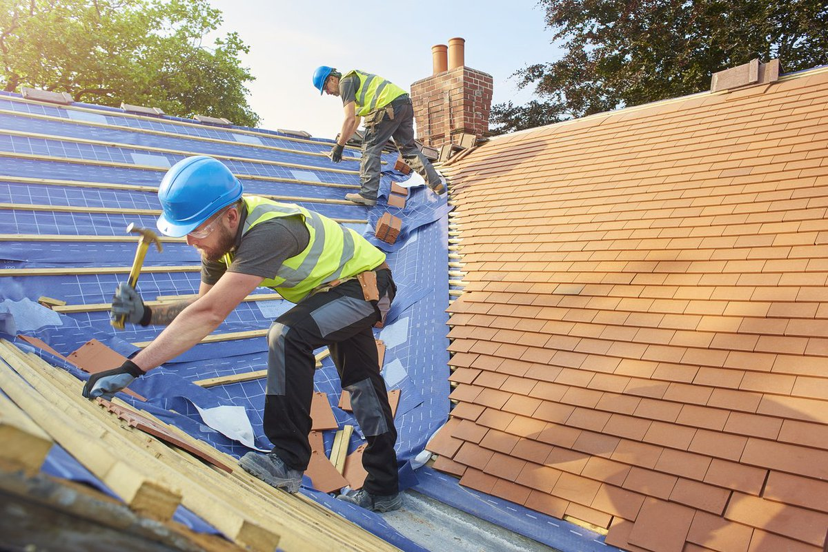 5 Roof Maintenance Tips for Homeowners