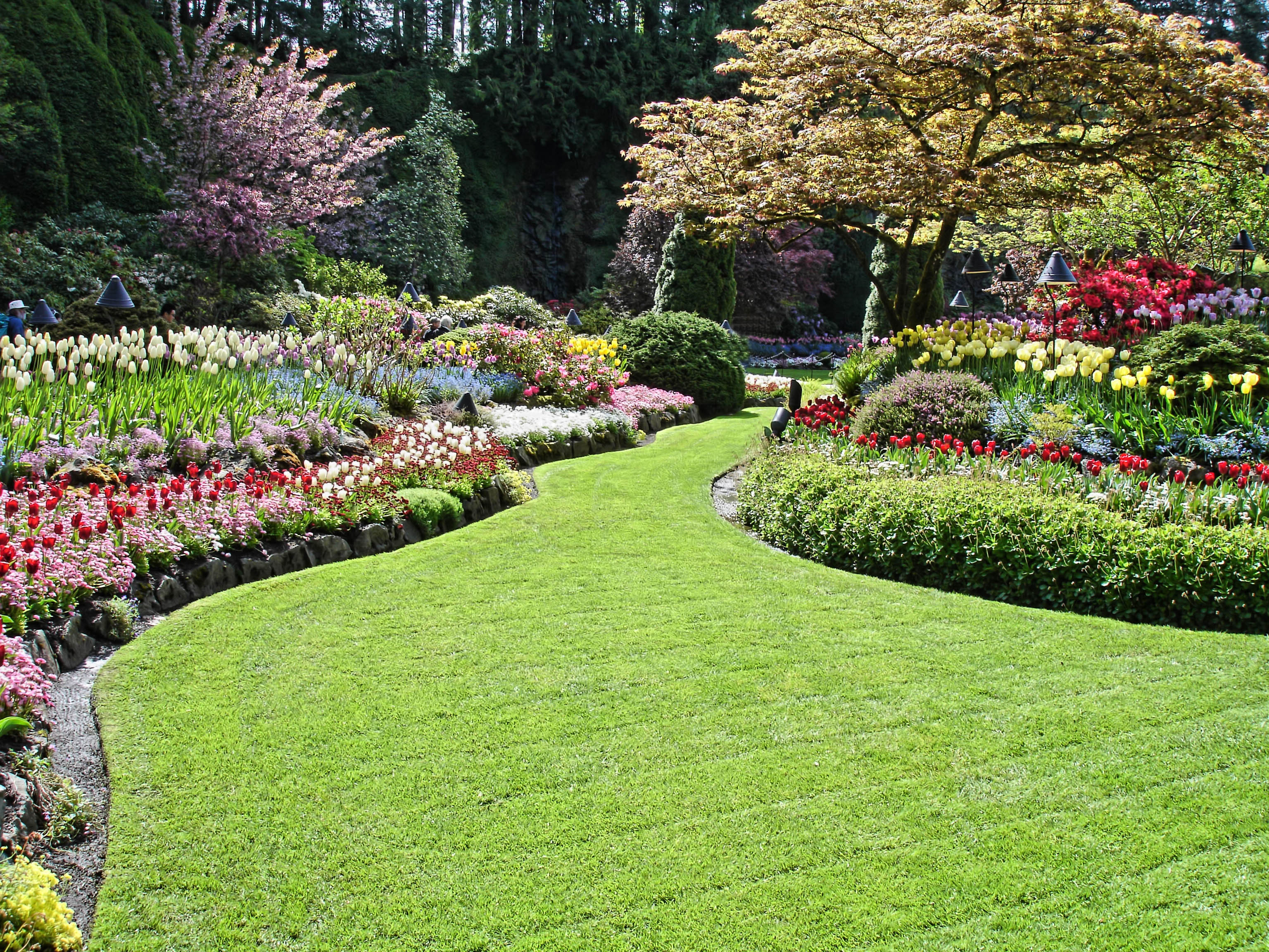 Seek Effective Landscaping Design Installation And Lawn